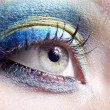 Beautiful girl eye — Stock Photo