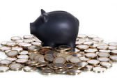 Euro coins with piggy bank — Stock Photo