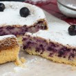 Tasty blackcurrant cake — Stock Photo
