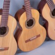 Spanish classical guitar - Stock Photo