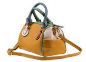 Handbag — Stock Photo
