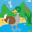 Royalty-Free Stock Vector Image: Duck in pond