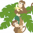 Monkeys on palm — Stock Vector