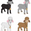 Set of sheep — Stock Vector