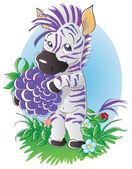 Blackberry zebra — Stock Vector