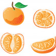 Stock Vector: Orange