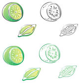 Lime, four versions — Stock Vector