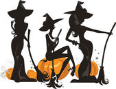 Silhouette of three glamour witches — Stock Vector