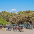 Stock Photo: Bicycles parked in disorder