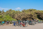 Bicycles parked in disorder — Stock Photo