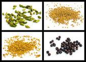 Yellow mustard seed, seed of hay greek, cardamom, juniper — Stock Photo