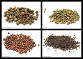 Pepper mixtures — Stock Photo