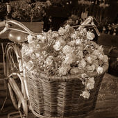 Flower on bike — Stock Photo