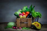 Natürmort sebze — Stok fotoğraf