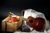 经典的四弦琴 — 图库照片