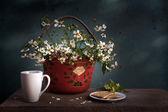 Still life flower basket — Foto de Stock