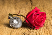 Still life pocket watch — Stockfoto