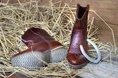 Still life cowboy boots — Stockfoto