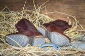 Botas de vaquero bodegón — Foto de Stock