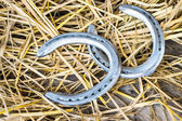 Horse shoes on wood — Stock Photo