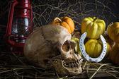 Nature morte citrouilles — Photo
