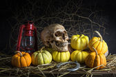 Still life pumpkins — Stock Photo