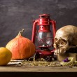 Still life skull — Stock Photo #41917469
