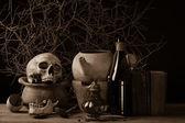 Vintage skull — Stock Photo