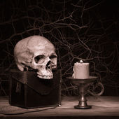 Still life black magic — Stockfoto