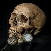 Human skull with pocketwatch — Stock Photo