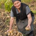Elderly woman working outdoors — Stock Photo