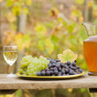 From grape to vine - Stock Photo