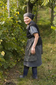 Elderly woman in the garden — Stock Photo