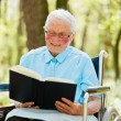 Storyteller Elderly — Stock Photo