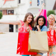 Women Enjoy Shopping — Stock Photo #27467375