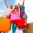 Women Like Shopping — Stock Photo #27467421