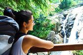 Beautiful Waterfall — Stockfoto