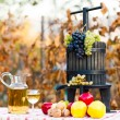 The richness of the autumn — Stock Photo