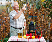 Examining of wine by man — Stock Photo