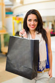 Fashionable Woman Shopping — Stock Photo