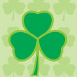 Shamrock - Stock Vector