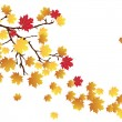 Fall — Stockvector #27333207