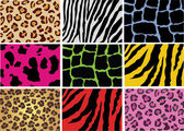 Animal skin — Stock Vector