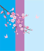 Cherry Blossom — Vector de stock
