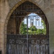 Old iron gates — Stock Photo