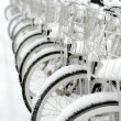 Row of bicycles — Stock Photo #23001584