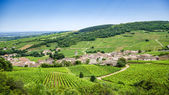Old village with vineyards — Stock Photo