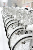 Row of bicycles — Stockfoto
