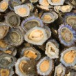 Limpets on fish market stall, close-up — Stock Photo #13945956