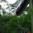 Stock Video: Elevated monorail in park
